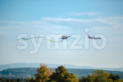 Kite and airplane Stock Photo