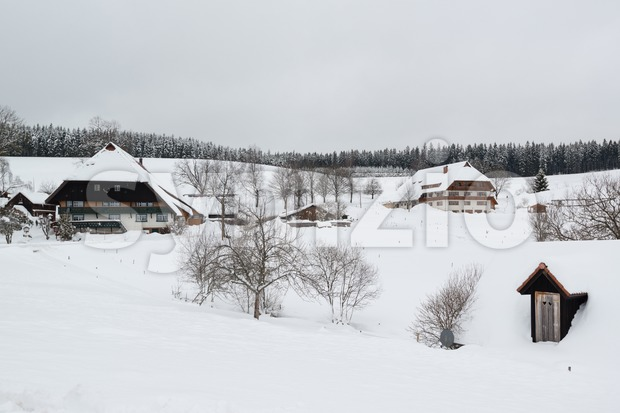 Typical black forest houses Stock Photo