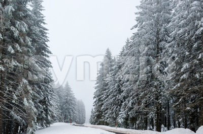 Car driving on winter road Stock Photo