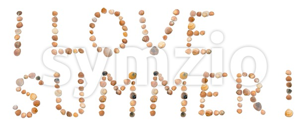 The words I Love Summer ! written using individual seashells on a white background - holiday concept