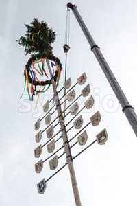Traditional maypole being set up Stock Photo