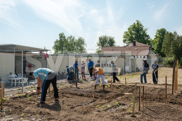 Scharnhausen, Germany - May 26, 2016: German volunteers are supporting African, Arabic and Asian refugees in setting up a small ...