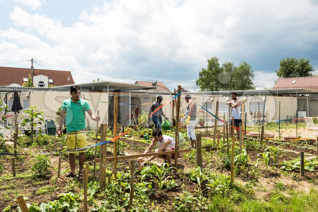 Scharnhausen, Germany - June 26, 2016: German volunteers were supporting African, Arabic and Asian refugees in setting up a small ...