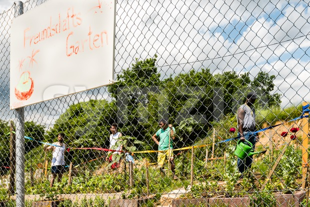 Gardening activities in a German refugee camp Stock Photo