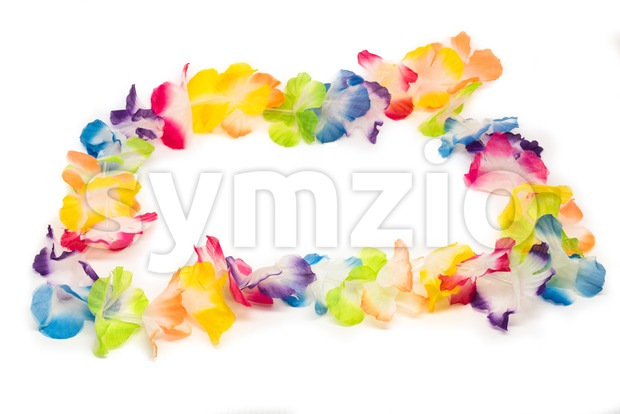 A colorful Hawaiian flower necklace - lei - with bright colorful flowers made of plastic. Studio shot on white with ...