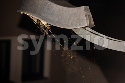 Trapped - spider webs under streetlight Stock Photo