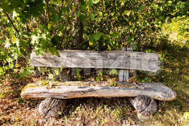 Old wooden bench in forest calling for a rest on a beautiful autumn day