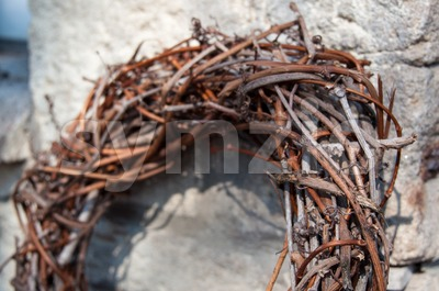 Willow Dry Branches Wreath Stock Photo
