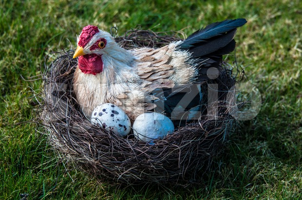 Hen And Eggs Stock Photo
