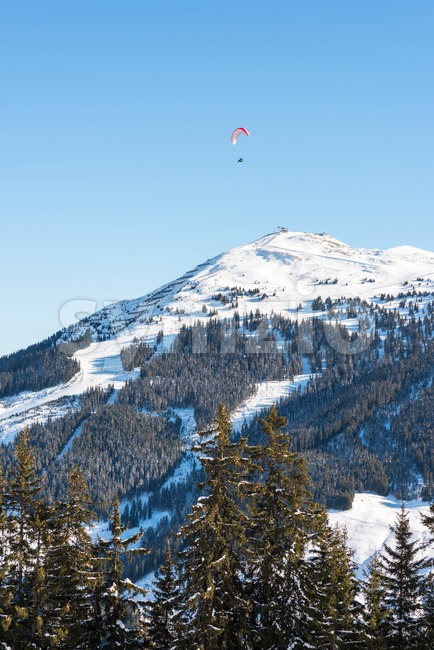 Paragliding over skiing area in the Austrian Alps Stock Photo