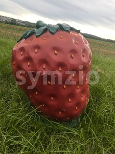 Funny giant strawberry sculpture in the fields Stock Photo