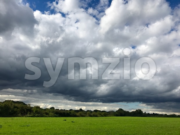 autumn grass and sky Stock Photo