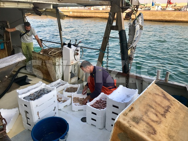 A fisherman is sorting his catch on an anchored fishing-boat Stock Photo