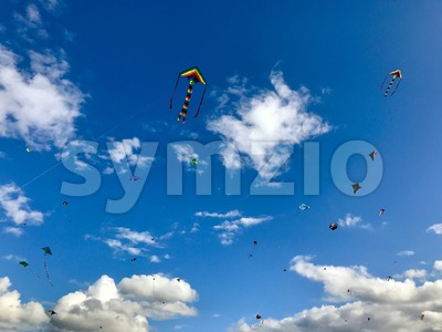 Dozens of kites are soaring in the sky Stock Photo