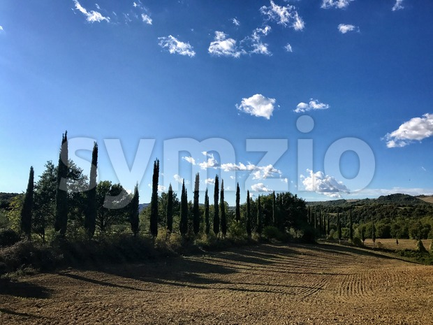 Typical country road in Tuscany lined with cypress trees Stock Photo
