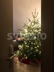 Ready for Christmas Stock Photo
