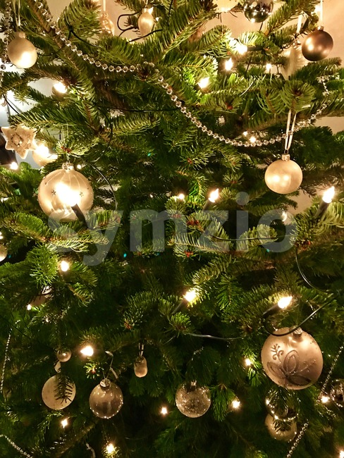 Closeup of Christmas-tree Stock Photo