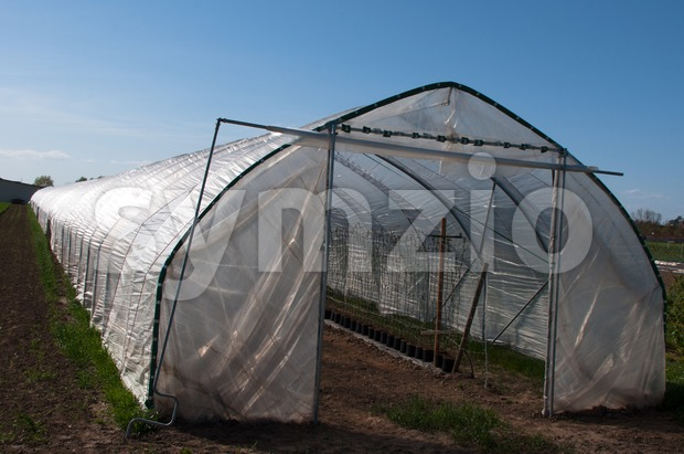 Nursery Greenhouse Stock Photo