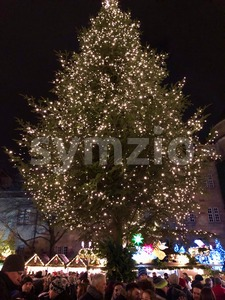 People are enjoying the Christmas market with a large Christmas tree Stock Photo