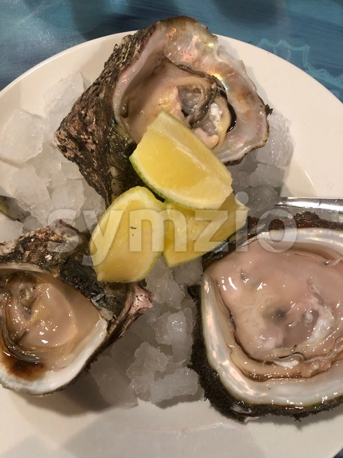 Opened oysters on crushed ice on a plate with lemons