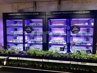 Instore and indoor greenhouse at a supermarket in Germany Stock Photo