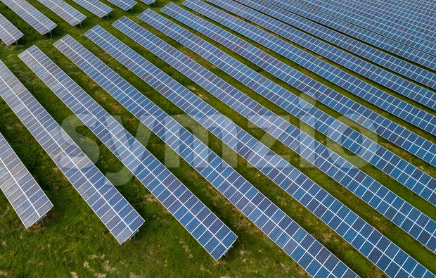 Aerial view of solar panels in solar farm for green energy taken from drone