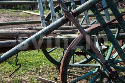 Vintage Horse Carriage Stock Photo