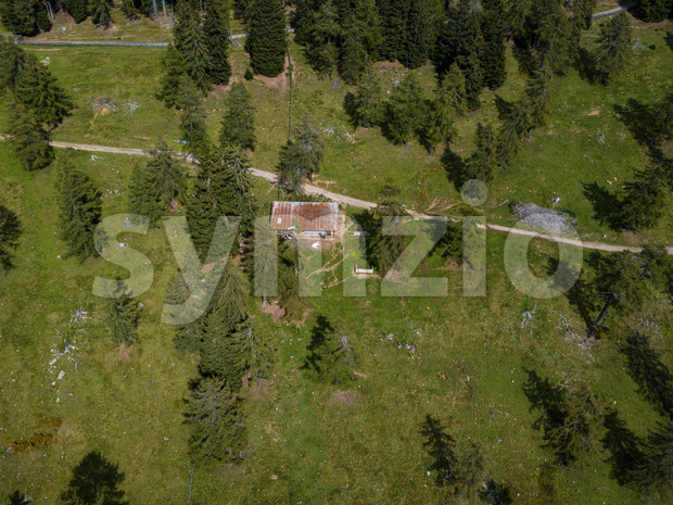 Aerial view on a hut with cows grazing in beautiful mountain scenario with lush forests along the Meraner Hoehenweg near Meran in South Tyrol, Italy Stock Photo