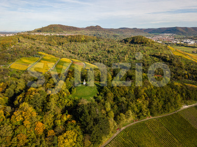 Rows of wine in autumn - vineyards in fall colors in Metzingen near Stuttgart, Germany, starting point of the Swabian Alps Stock Photo