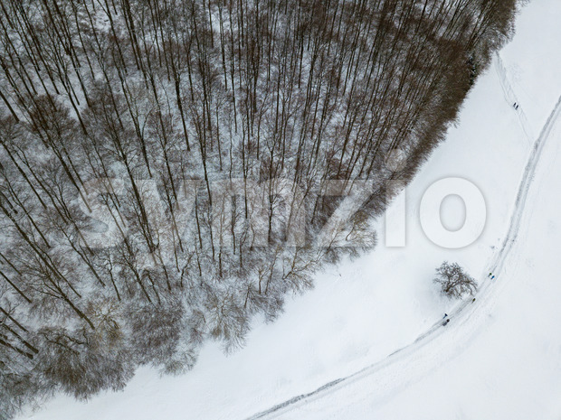 Aerial view on winter landscape with trees in deciduous forest covered with hoarfrost and people walking through snow covered path Stock Photo