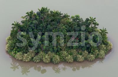 Romantic Desert Island With Palm Trees Stock Photo