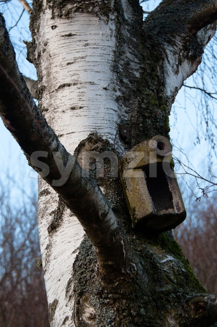 Birdhouse Stock Photo
