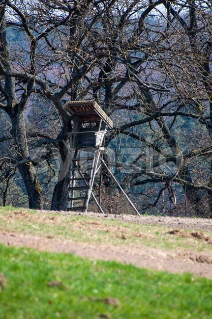 Wooden raised hide Stock Photo