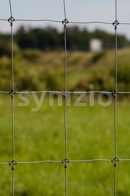 Wire fence with green grass Stock Photo