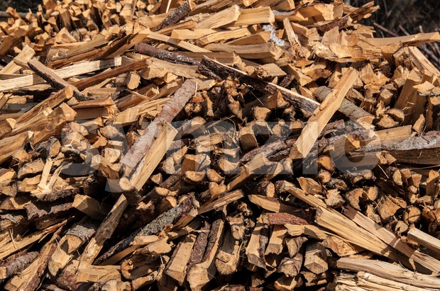 split wood pile in forest Stock Photo