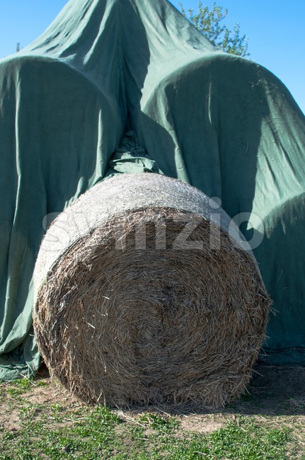 Hay balls in plastic cover wrap Stock Photo