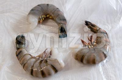 Fresh Large Shrimp Stock Photo