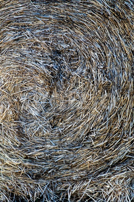 Close-up of a pile or stack of hay