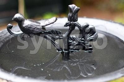 Birdbath Stock Photo