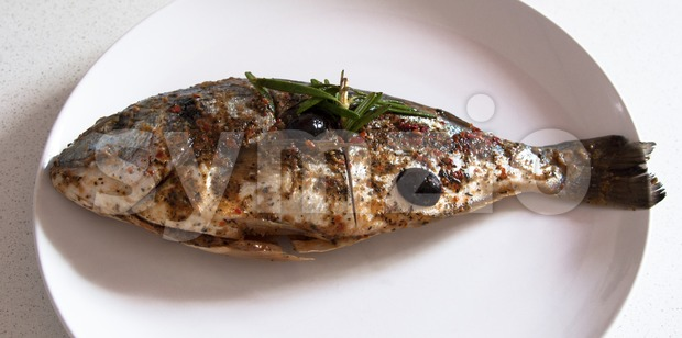 Gilthead Seabream waiting BBQ Stock Photo