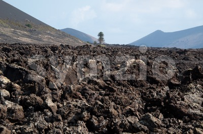 Lanzarote Soil Stock Photo