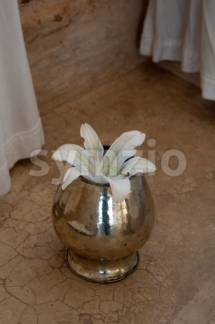 White Lily flower aranged in vase in beautiful spa interior